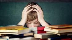 Schnupfenviren beeinträchtigen das Lernvermögen