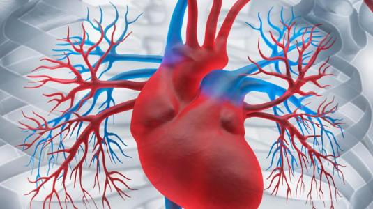 aneurysma, aortenaneurysma