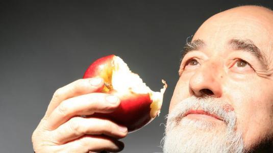 eine proteinarme diät könnte alzheimer verlangsamen