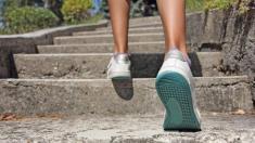 Treppensteigen hilft gegen Inkontinenz