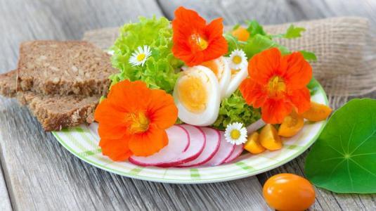 mind-di, salat, vollkornbrot