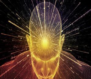 Kopf; Gehirn