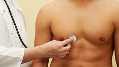 Lunge, Stethoskop, Herz