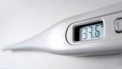 eisprung, schwangerschaft, thermometer