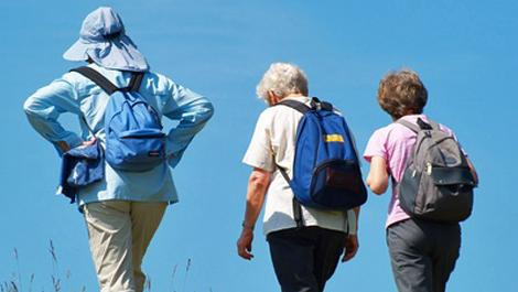 bewegung, senioren, sport, wandern
