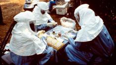 Ebola, 1995, Zaire