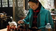 Fünf-Elemente-Ernährung, Diät, TCM, Traditionelle Chinesische Medizin, 5-Elemente,