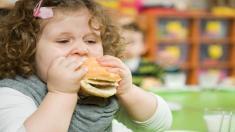 Hamburger, Mädchen, Kind
