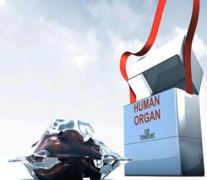 Organspende: Auch wer seine Organe nicht spenden will, kann das in den Ausweis eintragen