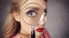 Augen-warum wir sehen, was wir sehen