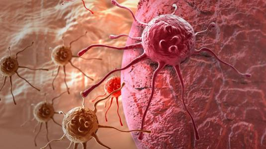 tumorzellen