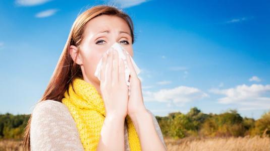 Heuschnupfen: Den Pollen entkommen
