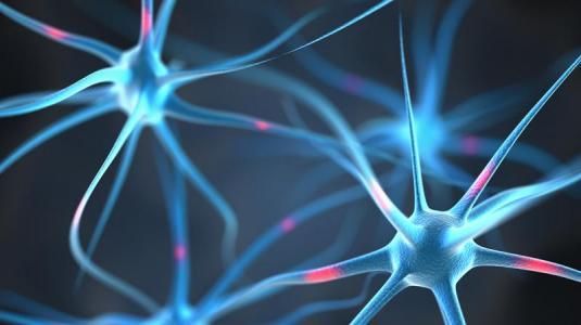 spinale muskelatrophie