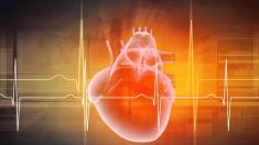 Miniatur-Herz-Lungenmaschine ermöglicht Transport von Schwerkranken