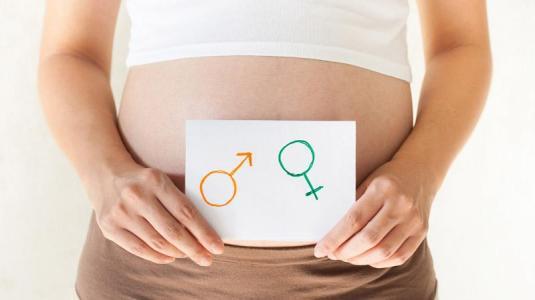 schwangerschaft: m