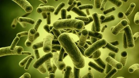 vitamin-c gegen tuberkulose