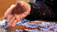Hand, Puzzleteile