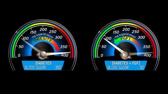 blutzuckerspiegel, typ-2-diabetes, wachstumsfaktoren, egf1