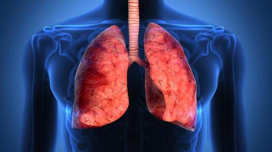 asthmakranke haben mehr pilze in der lunge