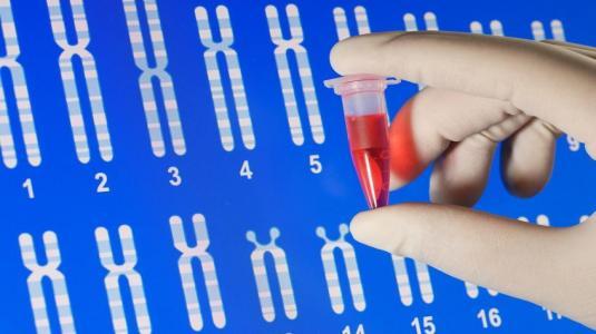 genfrschung, chromosomen, blutprobe, genetik