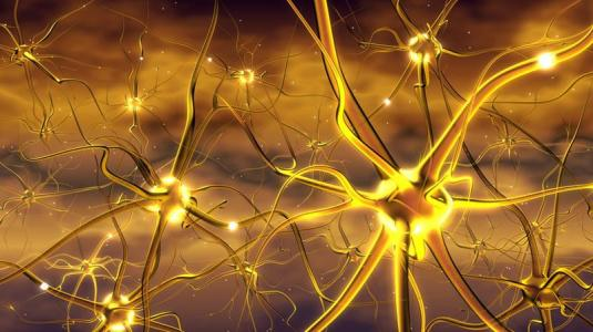 neues medikament gegen multiple sklerose.