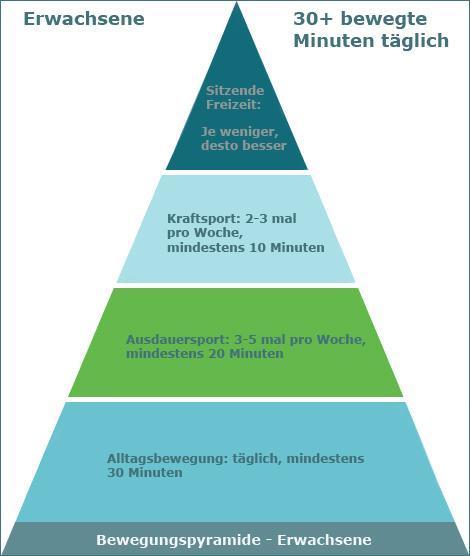 bewegungspyramide, erwachsene, sport