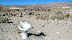 Toilettenschüssel in der Wüste