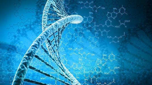 entscheidend für das krebswachstum ist die methylierung des dna-strangs