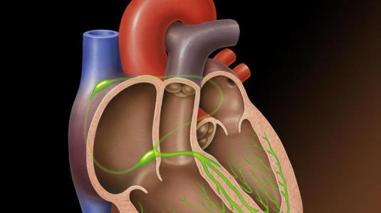 aortenklappenstenose