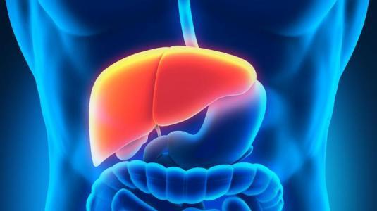 hepatomegalie