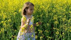Kinder entwickeln schon vor dem Ausbruch einer Pollenallergie Antikörper.