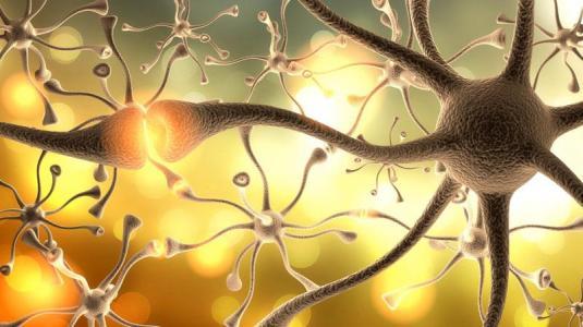 Multiple Sklerose – das sind die ersten Anzeichen
