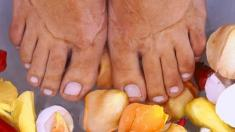 Haut, Füße, Aufbau, Funktion,