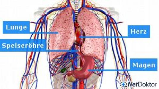 Wie den Krankenschein mit der Osteochondrose zu verlängern
