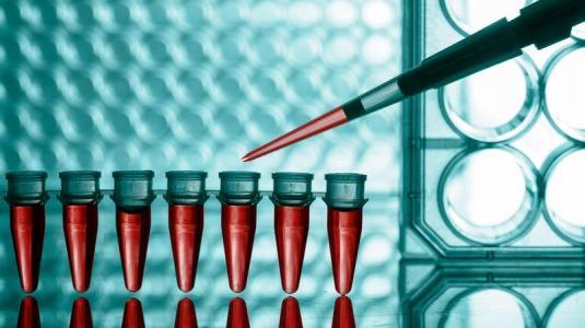 antikörper gegen viren im blut weisen auf ein erhöhtes hezrisiko hin