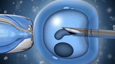 Künstliche Befruchtung, PID