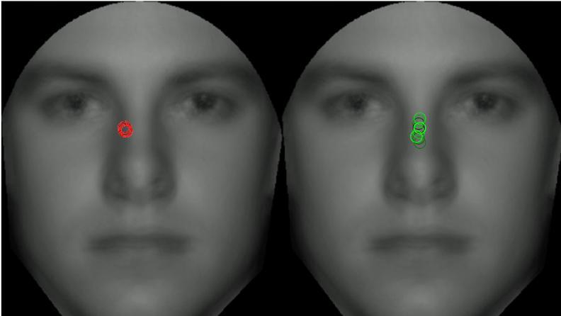 Menschen schauen nicht zuerst in die Augen ihres Gegnübers, sondern fixieren einen Punkt an der Nasenwurzel.