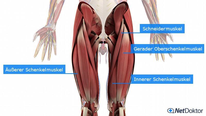 Muskelkater: Was dagegen hilft und wie sie ihn vermeiden